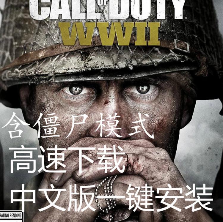 使命召唤中文版一键安装