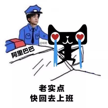 淘宝网络营销:全民抓天猫